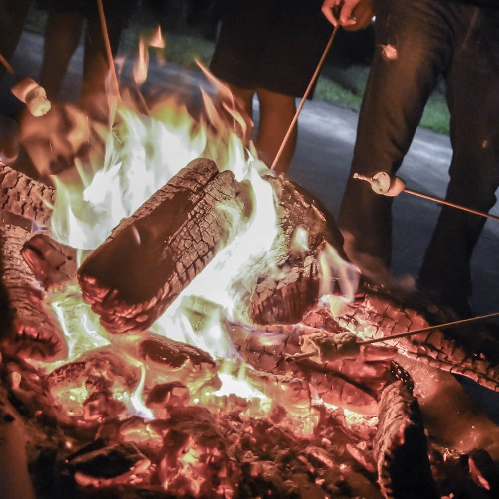 camping with kids - toasting marshmallows